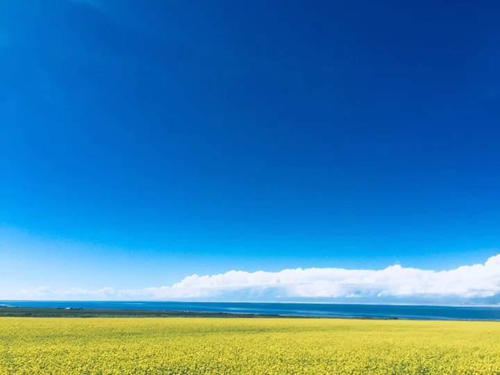 青海湖 (4)